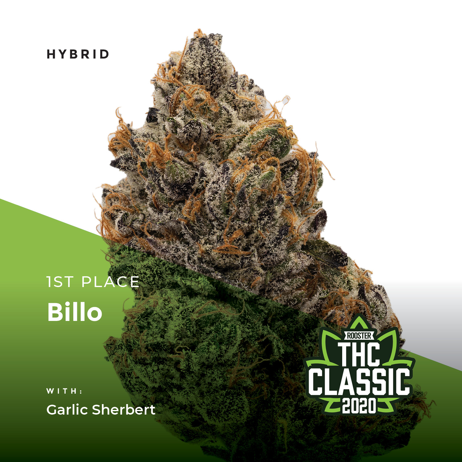 Best Colorado Cannabis Products
