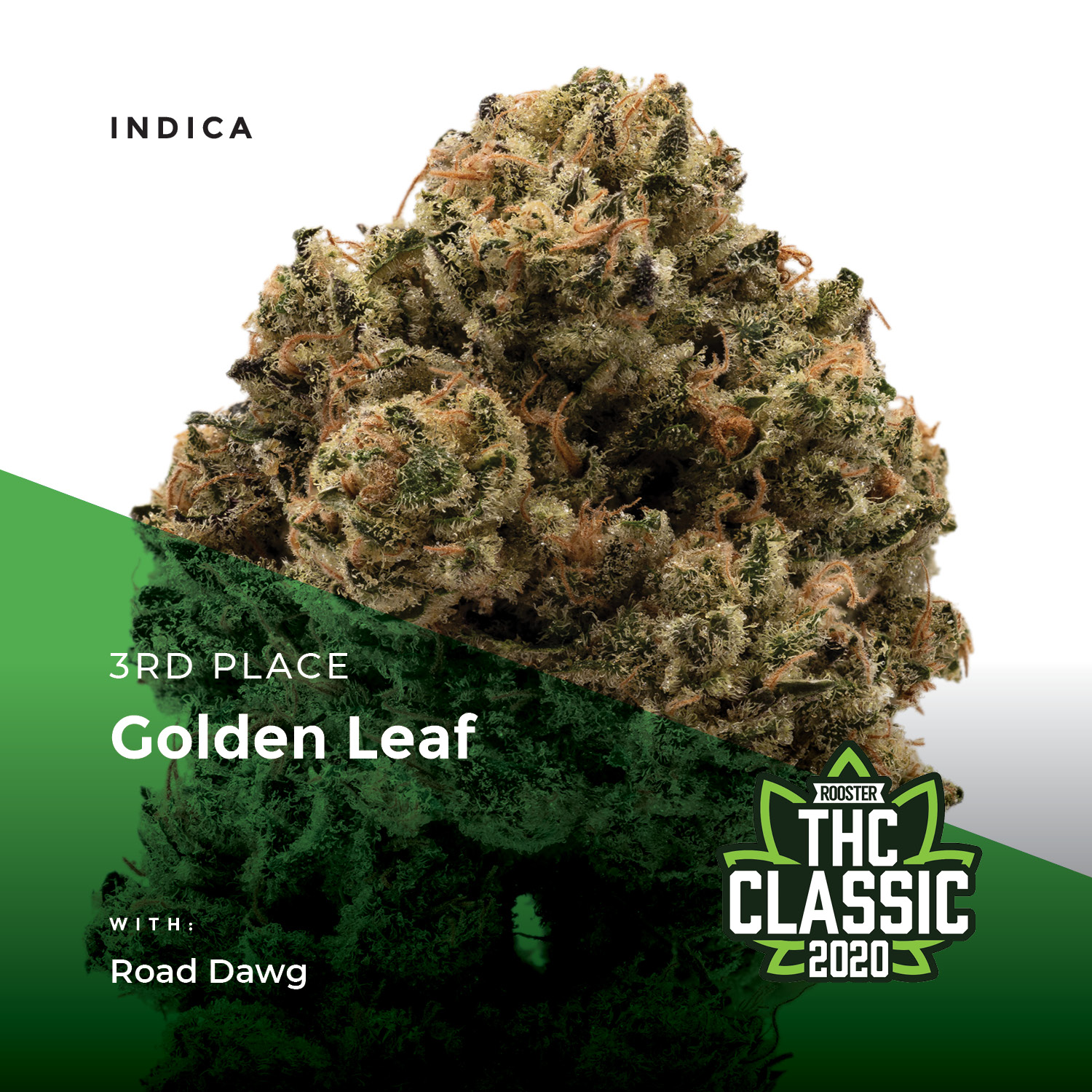 Best Colorado Cannabis Products: Flower