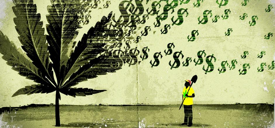 An expert weed investor explains what you can do to make cash money ...