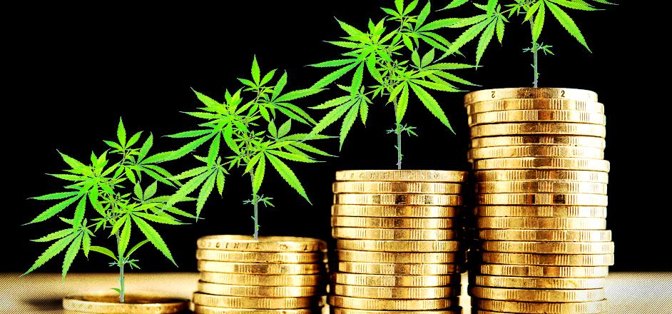 Image result for cannabis and banks